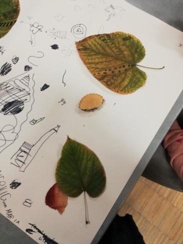 die Blätter in Bilder einbauen
